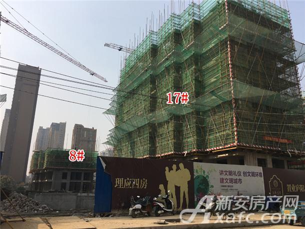 8#17#楼工程进度(2017.11.11).jpg