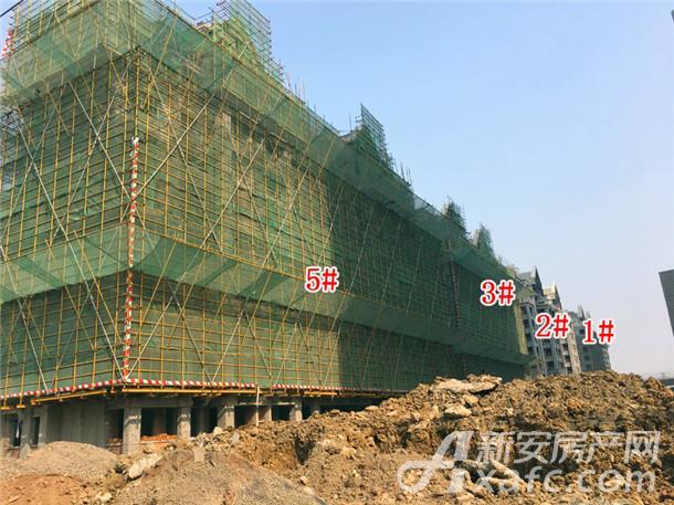 1#2#3#5#楼工程进度(2017.11.12).jpg