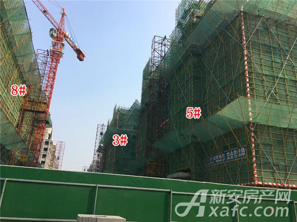 3#5#楼工程进度(2017.11.12).jpg