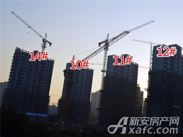 10#、11#、12#、14#工程进度