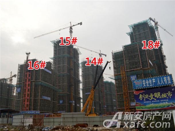 14#、15#、16#、18#工程进度