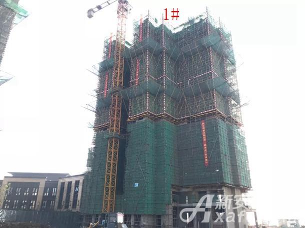新城·悦府住宅B1地块1#楼土建施工