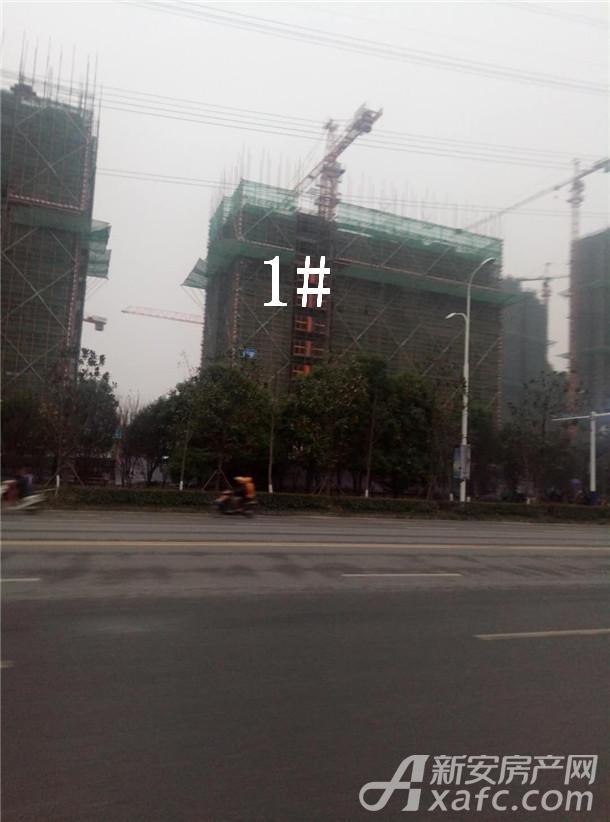 碧桂园仕府公馆3.jpg