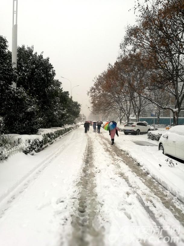 迎新汇 阜阳暴雪围城气温骤降 寻一个温暖楼盘安家
