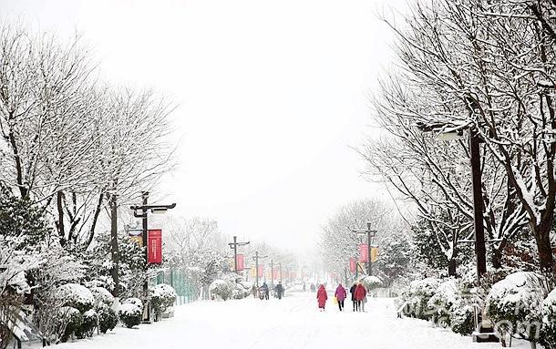 城市雪景网络示意图