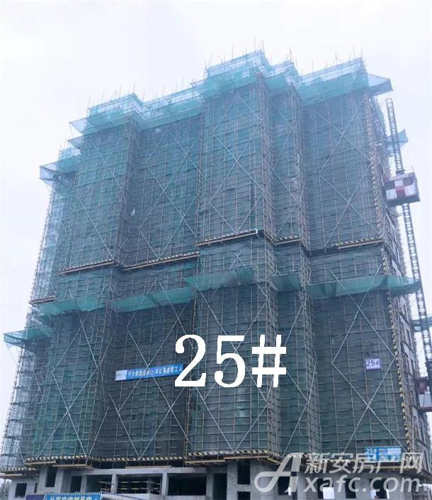 金鹏玲珑湾东院 1月工程进度