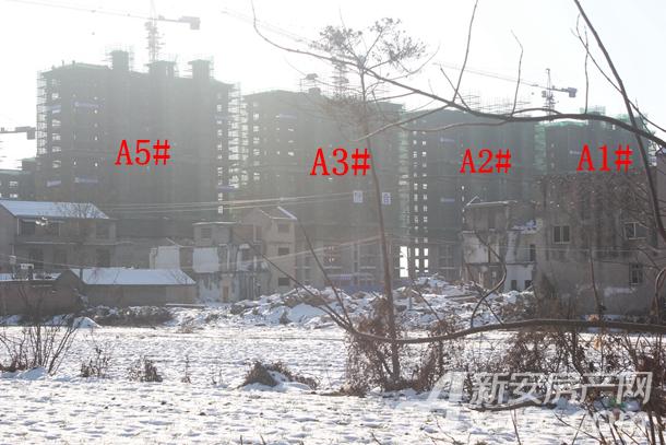 加侨侨城壹号1月份A1#、A2#、A3#、A5#项目进度