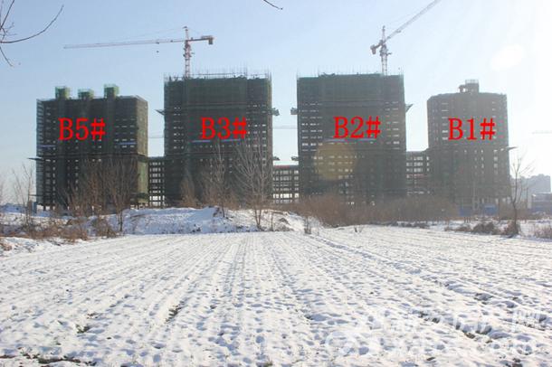 加侨侨城壹号1月份B1#、B2#、B3#、B5#项目进度
