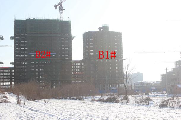 加侨侨城壹号1月份B1#、B2#项目进度