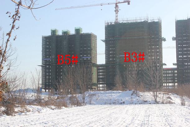 加侨侨城壹号1月份B3#、B5#项目进度