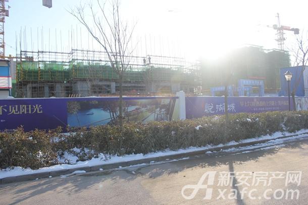 古井悦湖城1月份项目进度