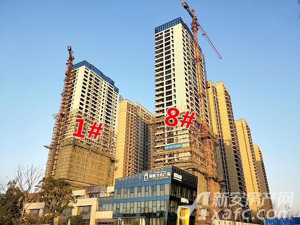 皖新文化广场1#和8#