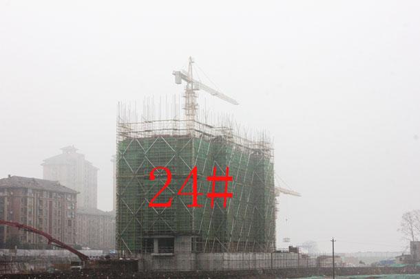 【金碧秋浦】1月份工程进度:24#已建至9层