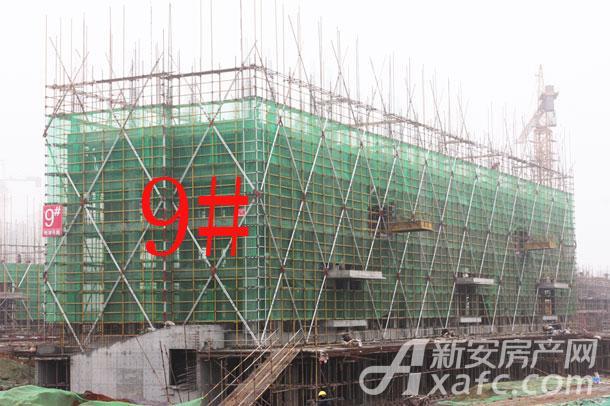 【观湖花园】1月份工程进度:9#洋房建至4层