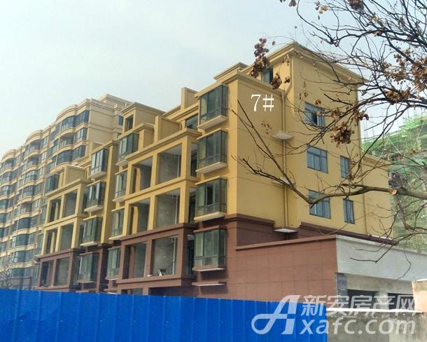 东城国际1月项目进度