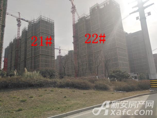古井上善名郡2月份21#、22#项目进度