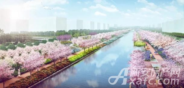 碧桂园黄金时代春节不打烊