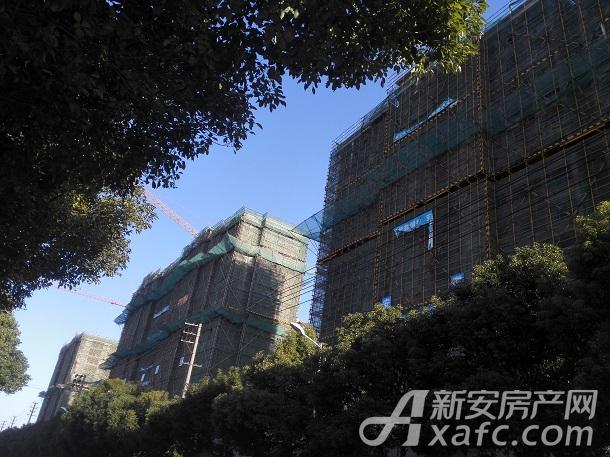 东方蓝海1.jpg