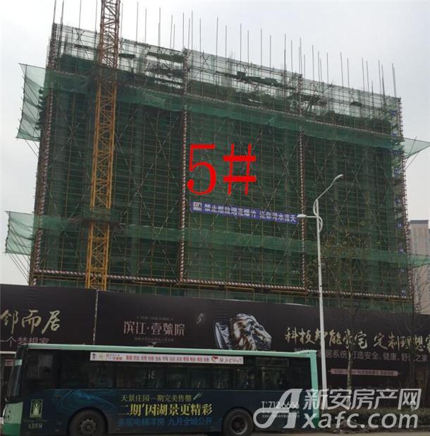 滨江壹号院5#楼