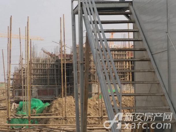 碧桂园城市之光2月份项目进度