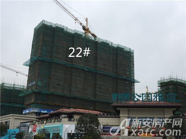 碧桂园公园雅筑3月工程进度