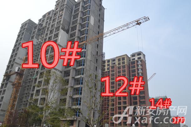 10#12#14#17#.jpg