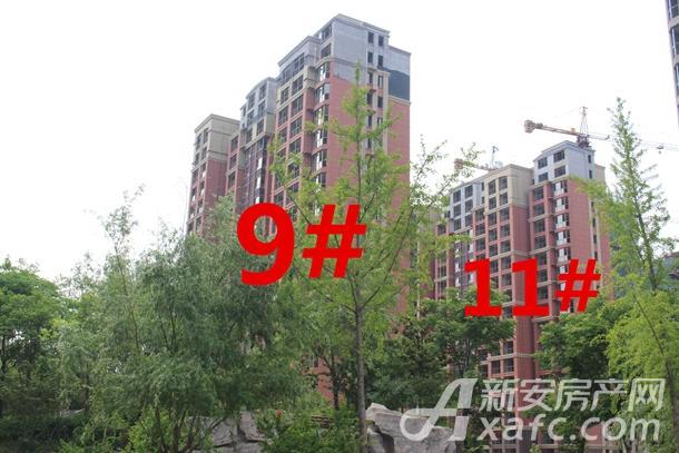 9#11#.jpg