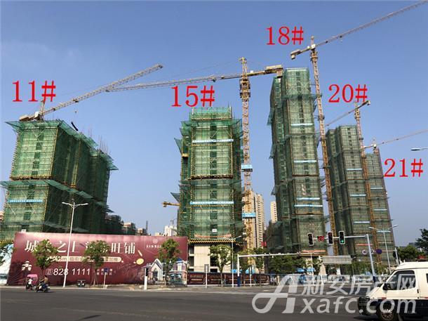 金大地紫金公馆11#、15#、18#、20#、21#楼项目进度