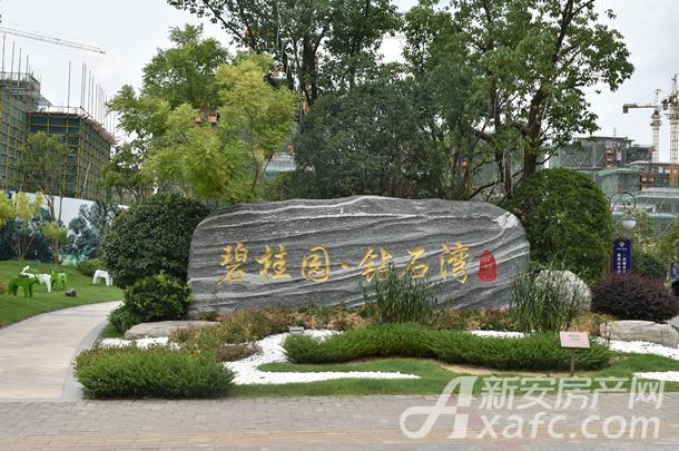 碧桂园钻石湾实景图