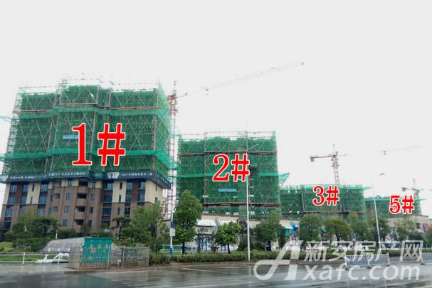 碧桂园翡翠天境沿街1#2#3#5#均有序建设中