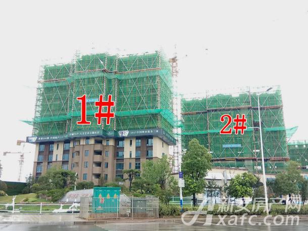 碧桂园翡翠天境1#2#建至13层左右