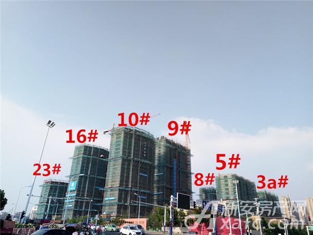 禹洲郎溪上里3a#5#8#9#10#16#23#楼项目进度