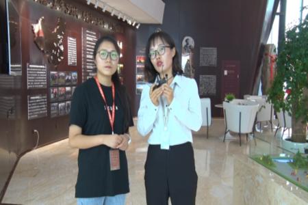 宝湾国际城视频