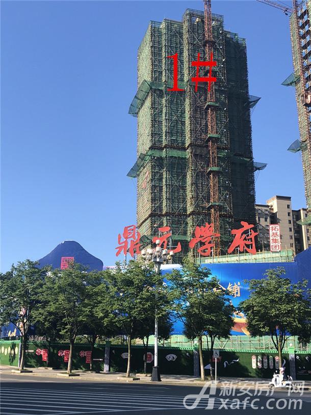 鼎元公馆1#楼