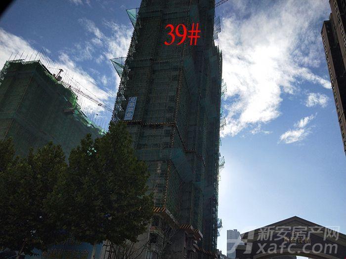柏庄春暖花开39#楼