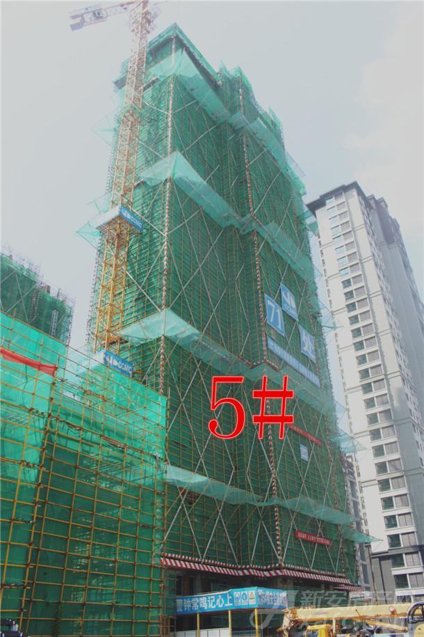 5#楼已经封顶