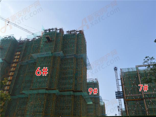 6#、7#、9#工程进度在建中