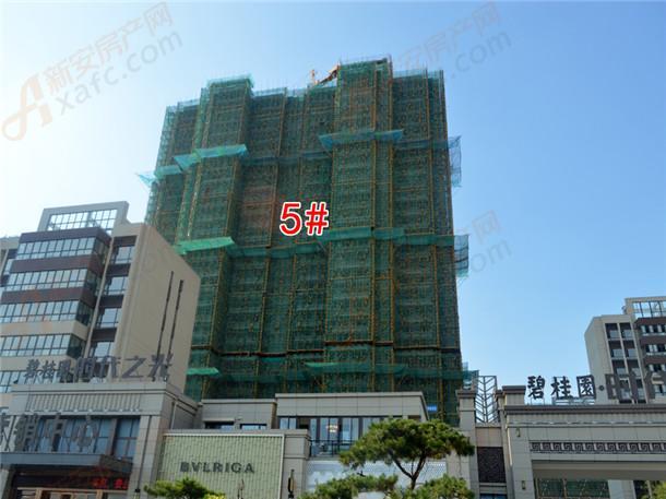 5#号楼工程进度在建中