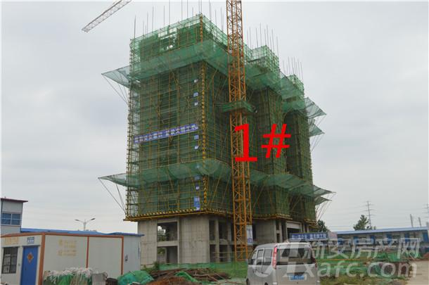 1#高层住宅主体结构已建至第12层