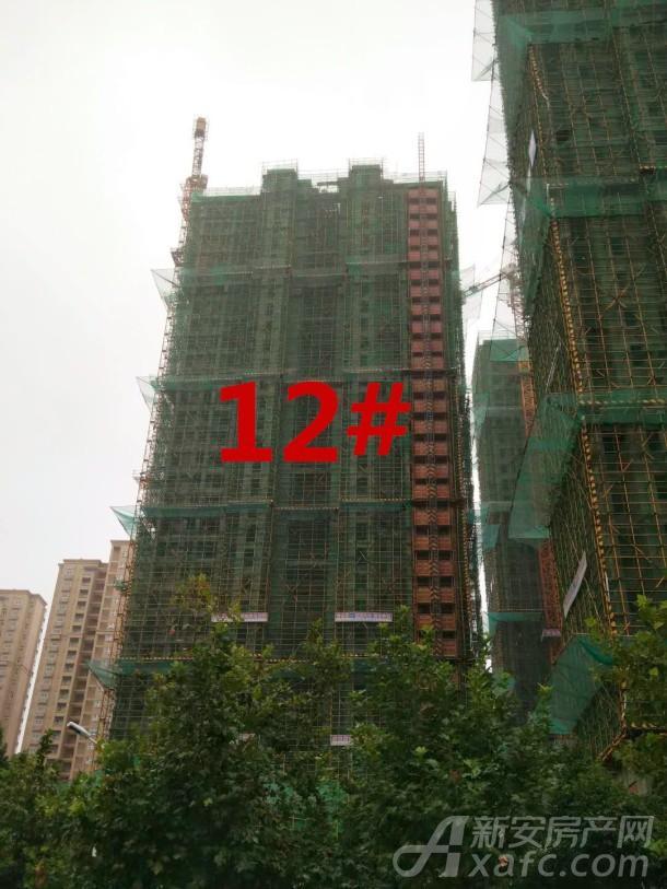淮矿东方蓝海12#进度