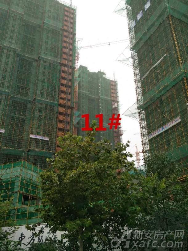 淮矿东方蓝海11#进度