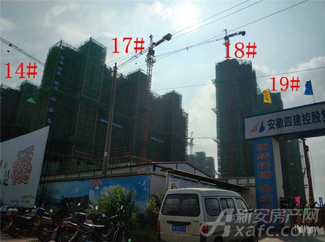 淮矿东方蓝海14#、17#、18#、19#项目进度