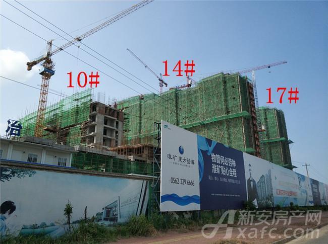 淮矿东方蓝海10#、14#、17#项目进度