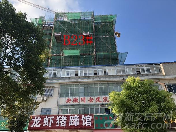 粤泰天鹅湾8月项目进度