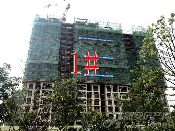 【融信海亮幸福里东郡】8月进度:1#楼建至18层