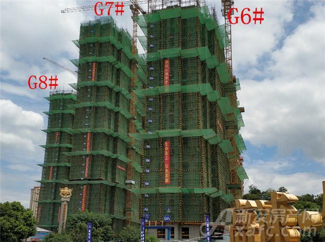 高速铜都天地G6#—G8#项目进度