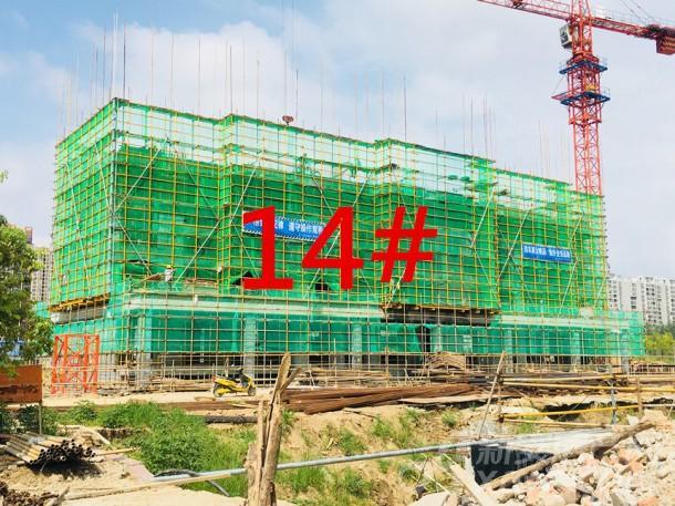 14#建至5层左右