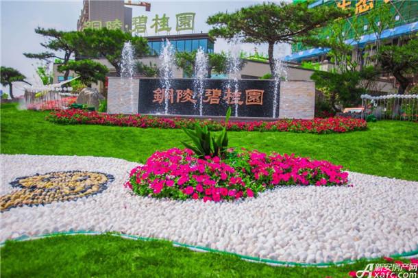 铜陵碧桂园实景图