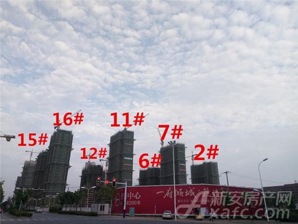 琥珀东华府9月15#12#11#16#7#2#6#项目进度