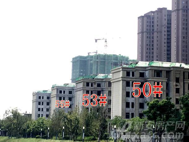 高速时代城沿岸洋房50#、53#、55#即将进入外墙装饰阶段